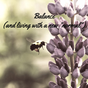 balance_640