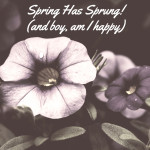 Spring Has Sprung! (and boy, am I happy)