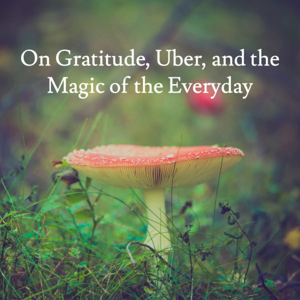 On Gratitude, Uber, and the Magic of the Everyday