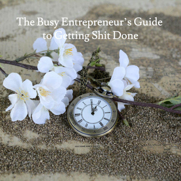 The Busy Entrepreneur's Guide to Getting Shit Done