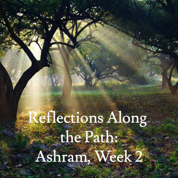Reflections Along the Path – Week 2